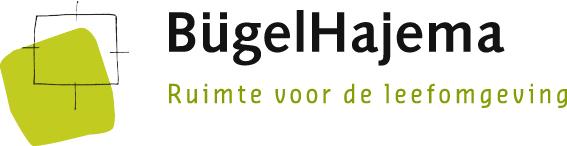 Logo van BügelHajema Adviseurs
